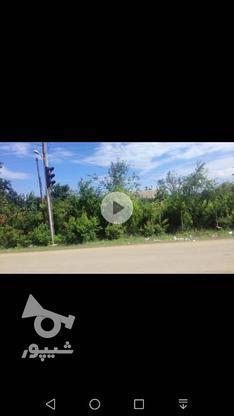 250مترزمین مسکونی بر جاده اصلی رودبارسرا در گروه خرید و فروش املاک در گیلان در شیپور-عکس3