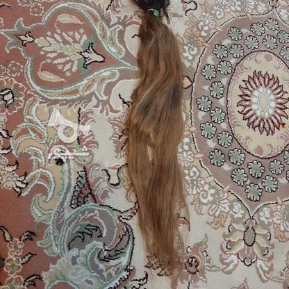 مو سر کاملا طبیعی در گروه خرید و فروش لوازم شخصی در تهران در شیپور-عکس1