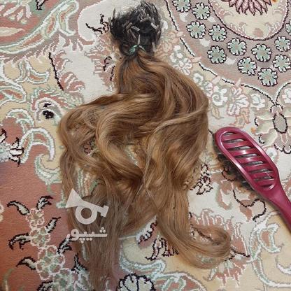 مو سر کاملا طبیعی در گروه خرید و فروش لوازم شخصی در تهران در شیپور-عکس5