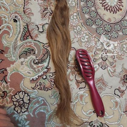 مو سر کاملا طبیعی در گروه خرید و فروش لوازم شخصی در تهران در شیپور-عکس3