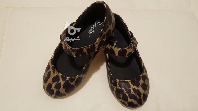 کفش پلنگی سایز 27 در گروه خرید و فروش لوازم شخصی در تهران در شیپور-عکس1