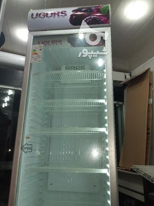 یخچال فریزر ایستاده 60سانت در گروه خرید و فروش صنعتی، اداری و تجاری در اصفهان در شیپور-عکس8