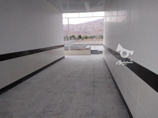 باغ ویلایی نوساز( مجموعه نخلستان) در گروه خرید و فروش املاک در فارس در شیپور-عکس5