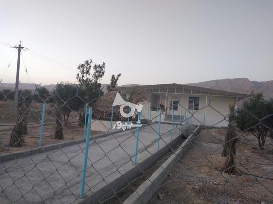 باغ ویلایی نوساز( مجموعه نخلستان) در گروه خرید و فروش املاک در فارس در شیپور-عکس3