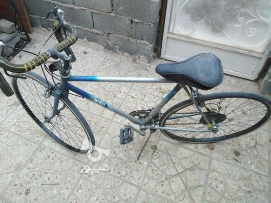 دوچرخه کورسی شیمانو در گروه خرید و فروش ورزش فرهنگ فراغت در تهران در شیپور-عکس4