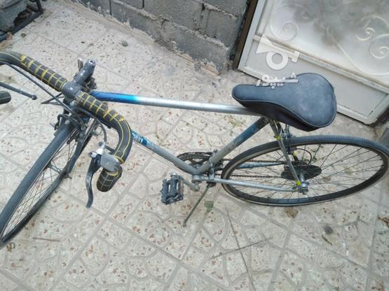 دوچرخه کورسی شیمانو در گروه خرید و فروش ورزش فرهنگ فراغت در تهران در شیپور-عکس2