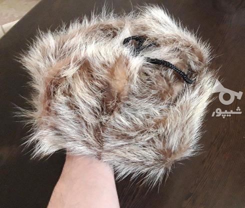 کلاه پوست گرگ اورجینال در گروه خرید و فروش لوازم شخصی در همدان در شیپور-عکس1