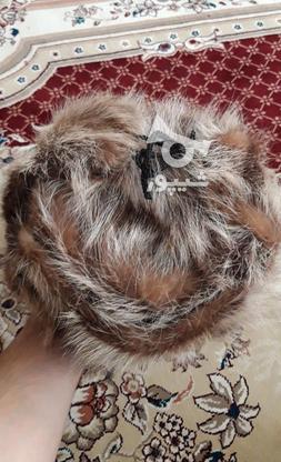 کلاه پوست گرگ اورجینال در گروه خرید و فروش لوازم شخصی در همدان در شیپور-عکس6