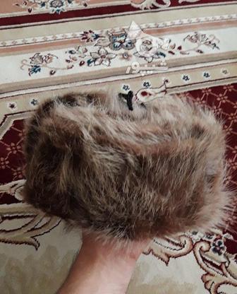 کلاه پوست گرگ اورجینال در گروه خرید و فروش لوازم شخصی در همدان در شیپور-عکس5