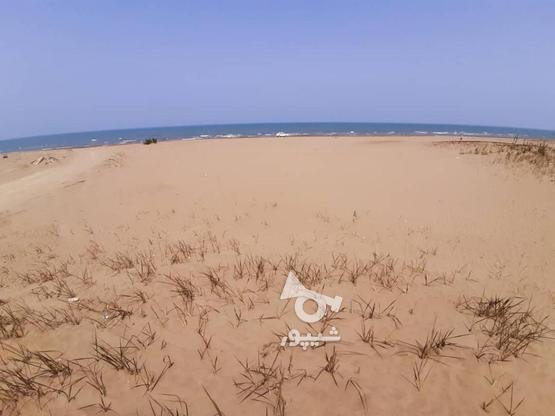 فروش 170 متر زمین ساحلی با سند تکبرگ در گروه خرید و فروش املاک در مازندران در شیپور-عکس3