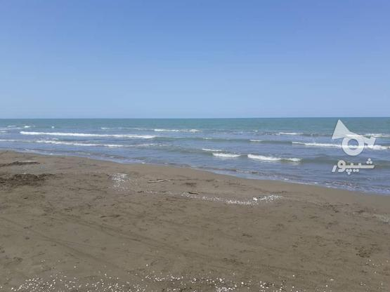فروش 170 متر زمین ساحلی با سند تکبرگ در گروه خرید و فروش املاک در مازندران در شیپور-عکس4