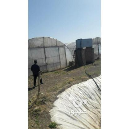 گلخانه لوله گالوانیزه در گروه خرید و فروش صنعتی، اداری و تجاری در خراسان رضوی در شیپور-عکس2