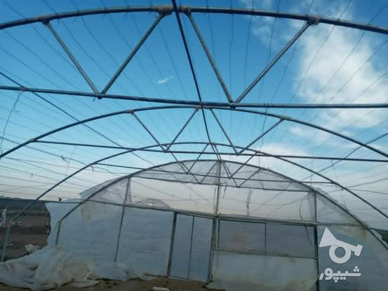 گلخانه لوله گالوانیزه در گروه خرید و فروش صنعتی، اداری و تجاری در خراسان رضوی در شیپور-عکس1