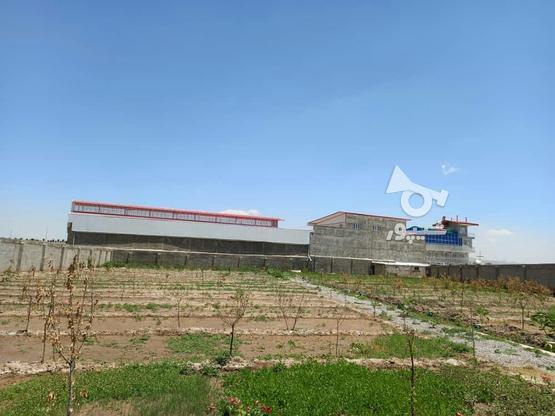 باغ ویلایی وصنعتی در گروه خرید و فروش املاک در آذربایجان شرقی در شیپور-عکس2