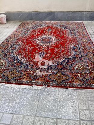 یک تخته فرش 12 متری در گروه خرید و فروش لوازم خانگی در مازندران در شیپور-عکس1