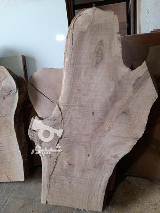 .چوب گردو خشک برش خورده. در گروه خرید و فروش خدمات و کسب و کار در اصفهان در شیپور-عکس2