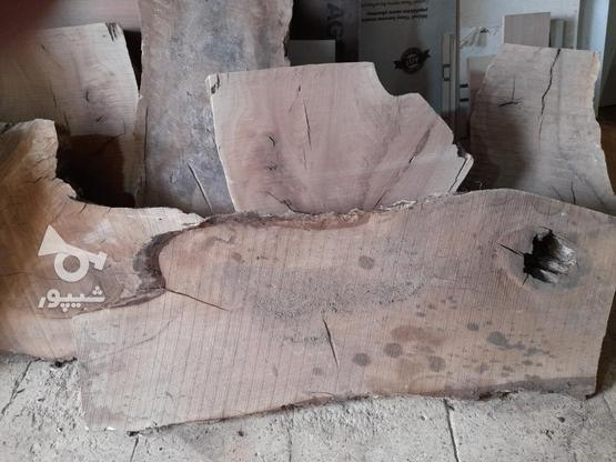 .چوب گردو خشک برش خورده. در گروه خرید و فروش خدمات و کسب و کار در اصفهان در شیپور-عکس3