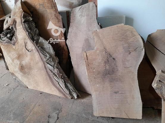 .چوب گردو خشک برش خورده. در گروه خرید و فروش خدمات و کسب و کار در اصفهان در شیپور-عکس4