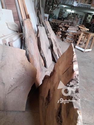 .چوب گردو خشک برش خورده. در گروه خرید و فروش خدمات و کسب و کار در اصفهان در شیپور-عکس7