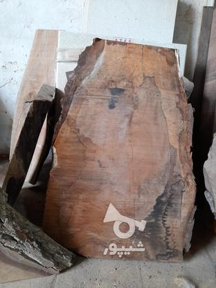 .چوب گردو خشک برش خورده. در گروه خرید و فروش خدمات و کسب و کار در اصفهان در شیپور-عکس5