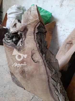 .چوب گردو خشک برش خورده. در گروه خرید و فروش خدمات و کسب و کار در اصفهان در شیپور-عکس6