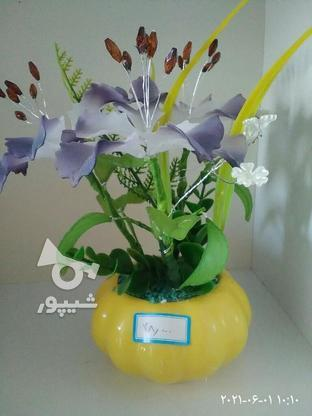 گلهای تزیینی ودکوری در گروه خرید و فروش خدمات و کسب و کار در خراسان جنوبی در شیپور-عکس5