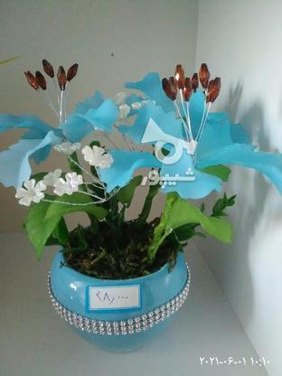گلهای تزیینی ودکوری در گروه خرید و فروش خدمات و کسب و کار در خراسان جنوبی در شیپور-عکس3