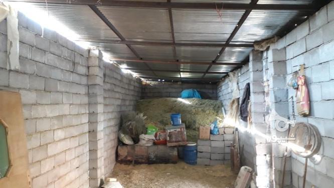 دامداری همدان در گروه خرید و فروش املاک در تهران در شیپور-عکس3