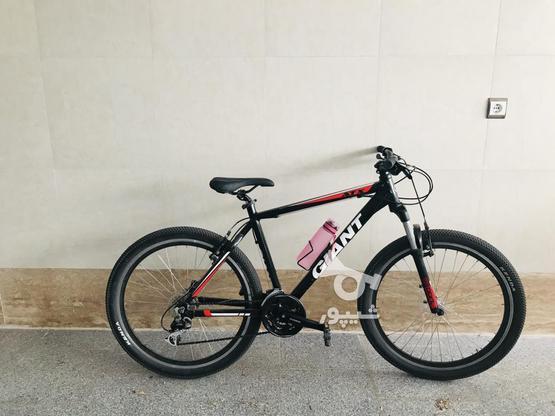 دوچرخه جایانت در گروه خرید و فروش ورزش فرهنگ فراغت در قزوین در شیپور-عکس1