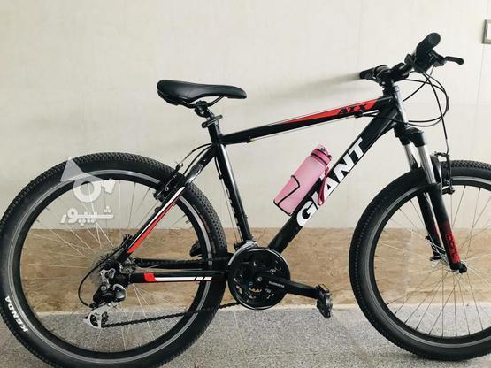 دوچرخه جایانت در گروه خرید و فروش ورزش فرهنگ فراغت در قزوین در شیپور-عکس2