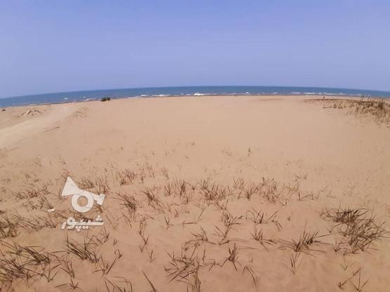 170 متر زمین ساحلی شهرک مروارید در گروه خرید و فروش املاک در مازندران در شیپور-عکس3