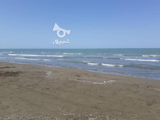 170 متر زمین ساحلی شهرک مروارید در گروه خرید و فروش املاک در مازندران در شیپور-عکس4