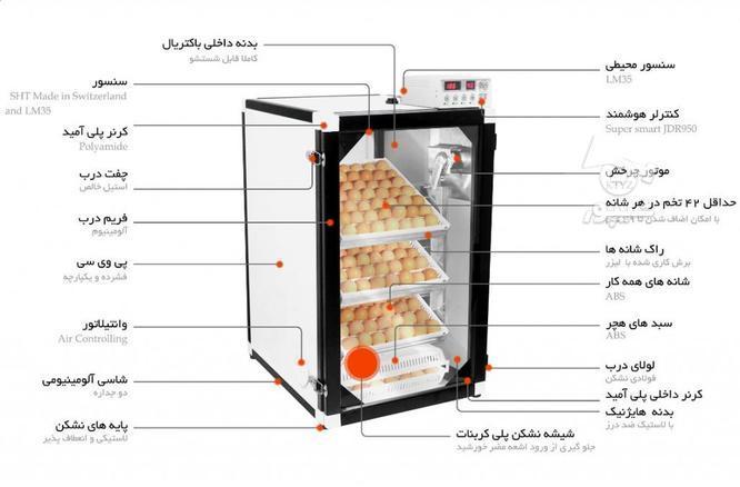 دستگاه جوجه کشی 168 تایی سوپر مینیاتور در گروه خرید و فروش صنعتی، اداری و تجاری در تهران در شیپور-عکس3