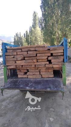 فروش تخته چوب راش در گروه خرید و فروش صنعتی، اداری و تجاری در مازندران در شیپور-عکس1