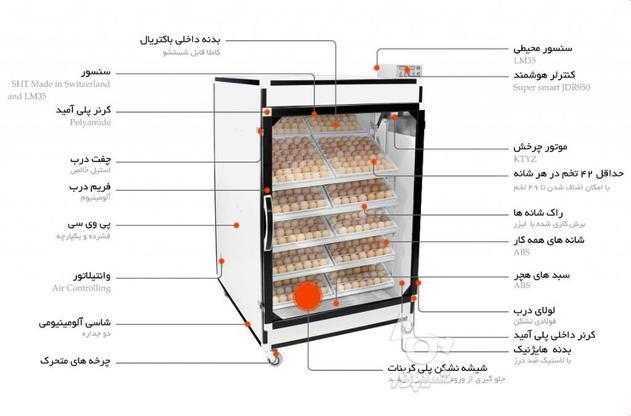 دستگاه جوجه کشی 1008 تایی سوپر مینیاتور در گروه خرید و فروش صنعتی، اداری و تجاری در تهران در شیپور-عکس3