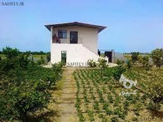 توجه توجه فروش 3000متر باغ بابافت مسکونی دربافت روستایی در گروه خرید و فروش املاک در مازندران در شیپور-عکس1