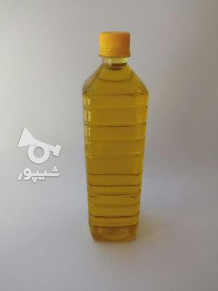 روغن زیتون درجه 1 بدون بو در گروه خرید و فروش خدمات و کسب و کار در گلستان در شیپور-عکس1