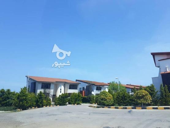 فروش 300 متر زمین ساحلی شهرک قناری در گروه خرید و فروش املاک در مازندران در شیپور-عکس3
