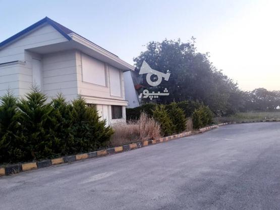 فروش 300 متر زمین ساحلی شهرک قناری در گروه خرید و فروش املاک در مازندران در شیپور-عکس5