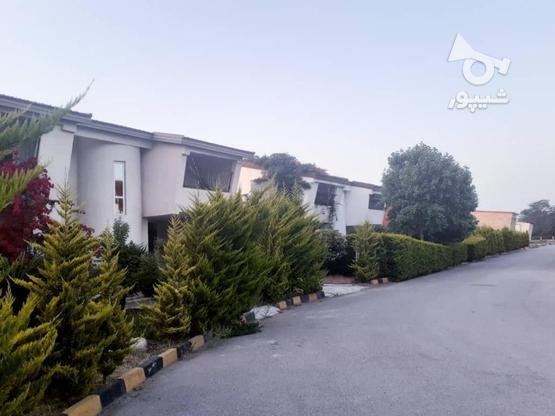 فروش 300 متر زمین ساحلی شهرک قناری در گروه خرید و فروش املاک در مازندران در شیپور-عکس7