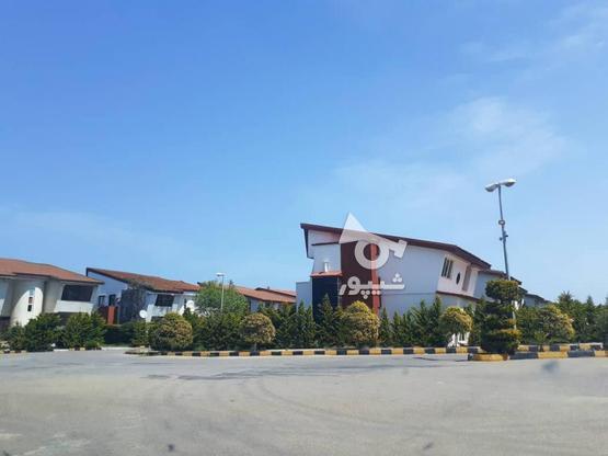 فروش 300 متر زمین ساحلی شهرک قناری در گروه خرید و فروش املاک در مازندران در شیپور-عکس4