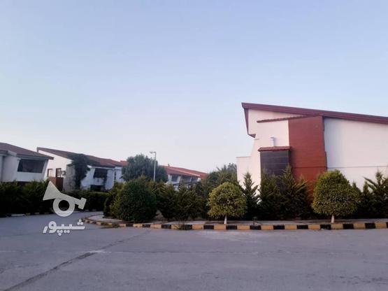 فروش 300 متر زمین ساحلی شهرک قناری در گروه خرید و فروش املاک در مازندران در شیپور-عکس6