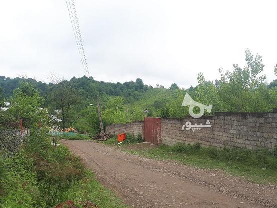 زمین مسکونی ویلایی در گروه خرید و فروش املاک در گیلان در شیپور-عکس1