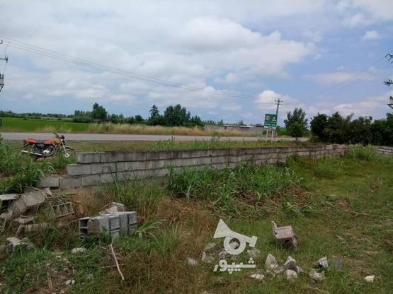 فروش زمین تجاری مسکونی جاده سرخرود در گروه خرید و فروش املاک در مازندران در شیپور-عکس2