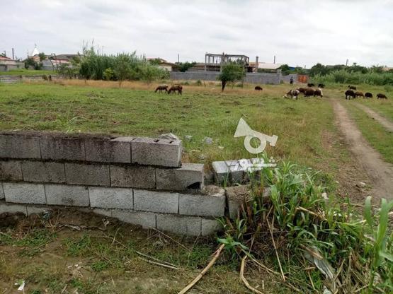 فروش زمین تجاری مسکونی جاده سرخرود در گروه خرید و فروش املاک در مازندران در شیپور-عکس4
