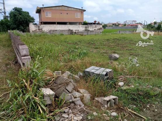 فروش زمین تجاری مسکونی جاده سرخرود در گروه خرید و فروش املاک در مازندران در شیپور-عکس1