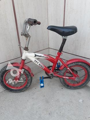 دوچرخه سالم بدون ایراد در گروه خرید و فروش ورزش فرهنگ فراغت در گلستان در شیپور-عکس1