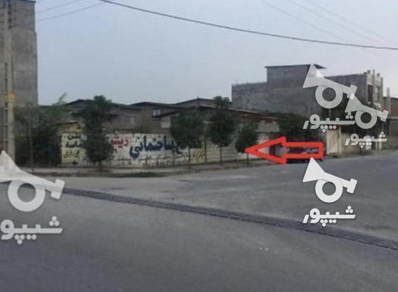 زمین 180 متری تجاری و مسکونی در سورک در گروه خرید و فروش املاک در مازندران در شیپور-عکس2