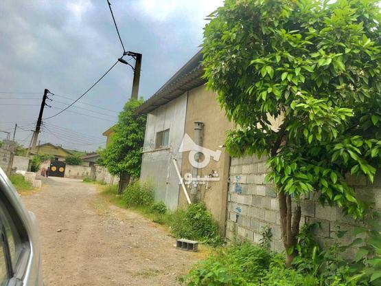 فروش زمین بافت کاملامسکونی زیرقیمت  در گروه خرید و فروش املاک در مازندران در شیپور-عکس3