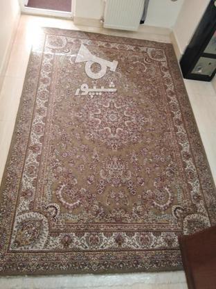 فرش 6 متری و12 متری تمیز در گروه خرید و فروش لوازم خانگی در مازندران در شیپور-عکس1